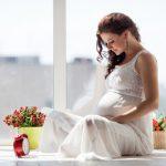 モルモットの妊娠の兆候はどういったことから分かりますか?