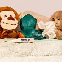 モルモット 風邪 うつる 対策