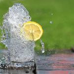 モルモットに必要なものは水、ビタミンC?