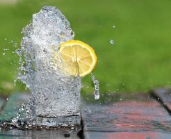 モルモット 水 ビタミンC
